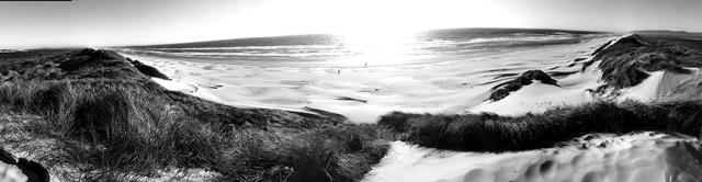 The beach near Florence, Oregon.